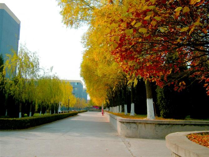 北京现代管理大学